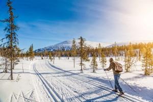 フィンランド雪景色