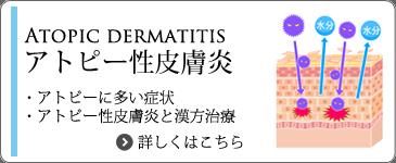 アトピー性皮膚炎と漢方薬治療
